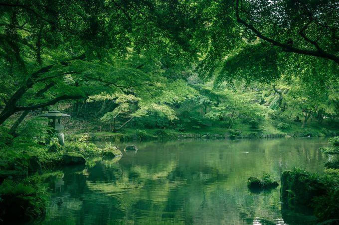 成田山竜智の池